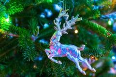 Macho de la Navidad imagen de archivo