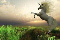 Macho del unicornio Imagen de archivo libre de regalías