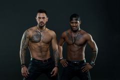 Machos with muscular tattooed torsos look attractive, dark background. Athletes on confident faces with nude muscular stock image