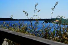 Machte einen Spaziergang auf dieser Holzbrücke lizenzfreie stockbilder