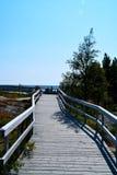 Machte einen Spaziergang auf dieser Holzbrücke stockbilder