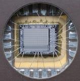 Machtige macrospaander Stock Afbeeldingen