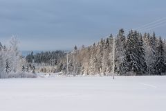 Machtslijnen die een de winterlandschap in Zweden kruisen stock foto's