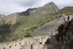 machu秘鲁pichu 库存图片