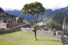 machu秘鲁pichu 库存照片
