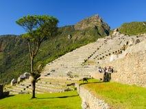 Machu Picchu大阳台 库存图片