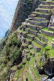 Machu Picchu大阳台 图库摄影