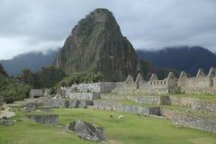Machu Picchu废墟在秘鲁 联合国科教文组织世界遗产名录站点从1983年 库存图片