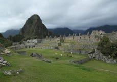 Machu Picchu废墟在秘鲁 联合国科教文组织世界遗产名录站点从1983年 库存照片