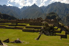 Machu Picchu обрабатывая землю террасы Стоковые Изображения RF