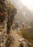 Machu Picchu 4 Royalty Free Stock Photo
