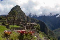 Machu Picchu Στοκ Εικόνα