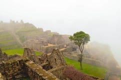 MACHU-PICCHU, CUSCO-REGION, PERU JUNI 4, 2013: Detaljer av bostadsområdet av för århundradeInca för th 15 citadellen Machu Picchu Arkivfoto