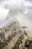 Machu Picchu, early morning, Peru Royalty Free Stock Image