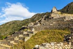 Machu Picchu gräsplan terrasserar och fördärvar med berg i baksidan Arkivfoton