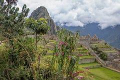 Machu Picchu Inca Ruins - sakral dal, Peru arkivfoton