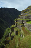 Machu Picchu no Peru Foto de Stock Royalty Free