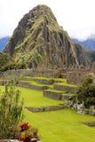 Machu Picchu Perù Immagini Stock Libere da Diritti
