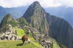 Machu Picchu, Perù. Fotografie Stock Libere da Diritti