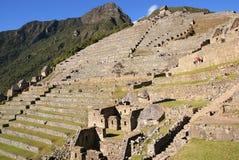 Machu Picchu, Perú Fotografía de archivo libre de regalías