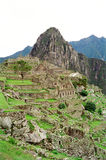 Machu Picchu, Peru. Machu Picchu, The Lost City of the Incas, Peru royalty free stock images