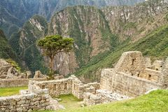 Machu Picchu, Peru. The ancient Inca city, located on Peru at the mountain, New Wonder of the World. Machu Picchu, Peru. The ancient Inca city, located on Peru stock image