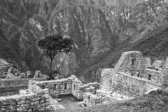 Machu Picchu, Peru. The ancient Inca city, located on Peru at the mountain, New Wonder of the World. Machu Picchu, Peru. The ancient Inca city, located on Peru stock images