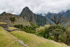 Machu Picchu in Peru Custo South America Stock Fotografie