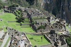 Machu Picchu Peru Details Immagini Stock