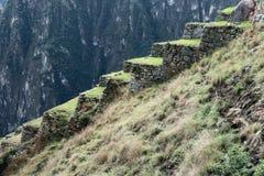 Machu Picchu Peru Details Immagini Stock Libere da Diritti