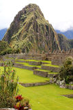 Machu Picchu Peru Royalty Free Stock Images