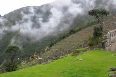 Machu Picchu in Peru. This photo is taken in Machu Pichu Heritage in Peru. Machu Picchu stands 2,430 m above sea-level, in the middle of a tropical mountain Stock Photo
