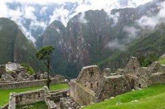 Machu Picchu in Peru. This photo is taken in Machu Pichu Heritage in Peru. Machu Picchu stands 2,430 m above sea-level, in the middle of a tropical mountain Stock Photography