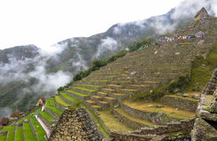 Machu Picchu in Peru. This photo is taken in Machu Pichu Heritage in Peru. Machu Picchu stands 2,430 m above sea-level, in the middle of a tropical mountain Royalty Free Stock Photo