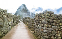 Machu Picchu in Peru. This photo is taken in Machu Pichu Heritage in Peru. Machu Picchu stands 2,430 m above sea-level, in the middle of a tropical mountain Royalty Free Stock Image