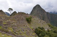 Machu Picchu ruins royalty free stock images