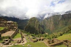 Machu Picchu's gardens Stock Images