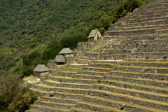 Machu Picchu. Storehouses and agricultural terraces at the end of the dry season Royalty Free Stock Images