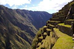 Machu Picchu Stromi tarasy - Peru Zdjęcia Royalty Free