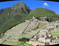 Machu Picchu/ terace. Machu Picchu, spring, morning, more green royalty free stock images