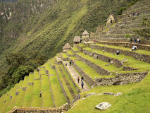 Machu Picchu Terraced fields royalty free stock photography