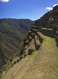 Machu Picchu terraces. Detail of Machu Picchu western terraces. They were used both to agriculture and erosion prevention Royalty Free Stock Photo