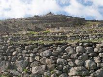 Machu Picchu terrasser Royaltyfri Bild