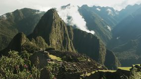 Machu picchu and wild orchids on a misty morning