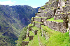Machu Picchu, World's wonder. Peru. Stock Image