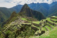Machu Picchu zieleni tarasy Zdjęcie Stock
