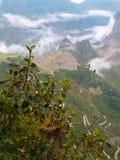 Machu Pichu положенное в кожух в туман Стоковые Изображения RF