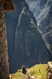 Machu Pichu Royalty Free Stock Images