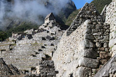 In machu pichu Stock Photography