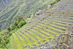 machuperu för stad incas förlorad picchu Arkivbild